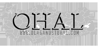 Ohal'de Pasaport İptalleri ve Zayi Kaydı